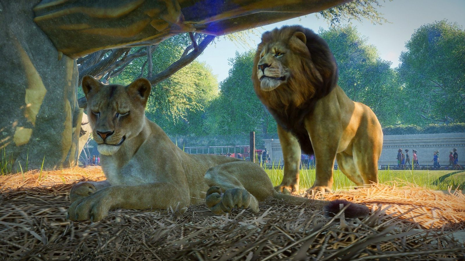 Go Hands-On With Planet Zoo Early Access Beta, Coming In September