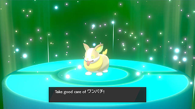 Pokemon Sword and Shield: How to Trade Online