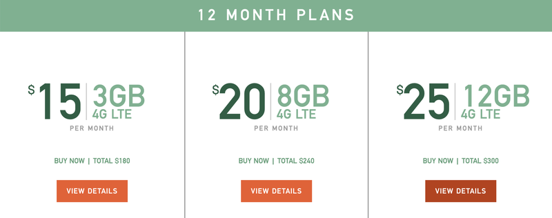 Mint Mobile 12 month plans