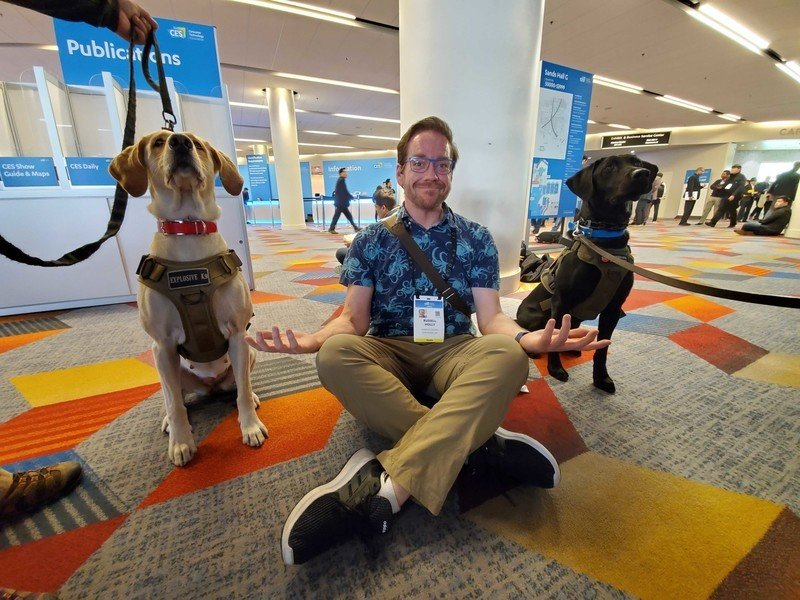 CES 2020 had so many good canines — these are the very best ones