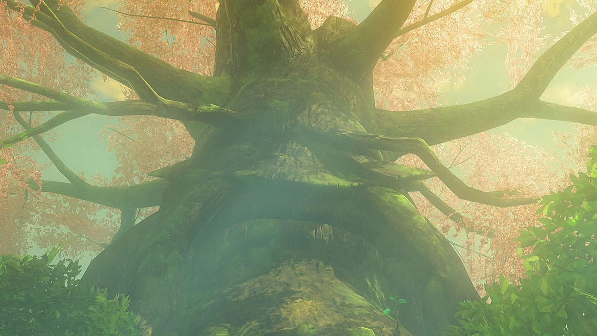 This is a New Shortcut to Breath of the Wild's Korok Forest